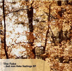 ...But Non-Fake Feelings EP